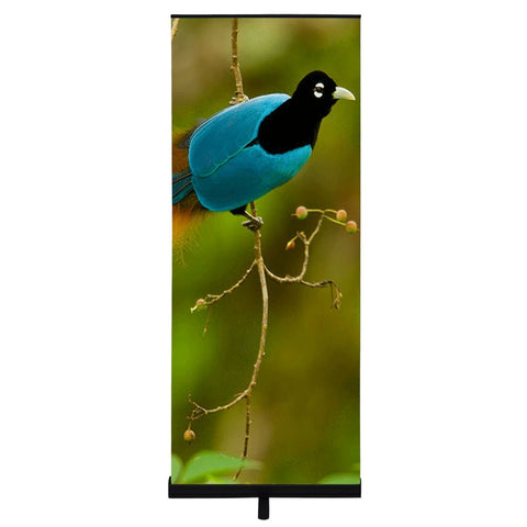 "Premium Black Retractable Banner Stand 34"" with Fabric Graphic"