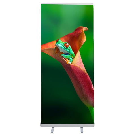 Economy Retractable Banner Stand with Vinyl Graphic RBS34EV