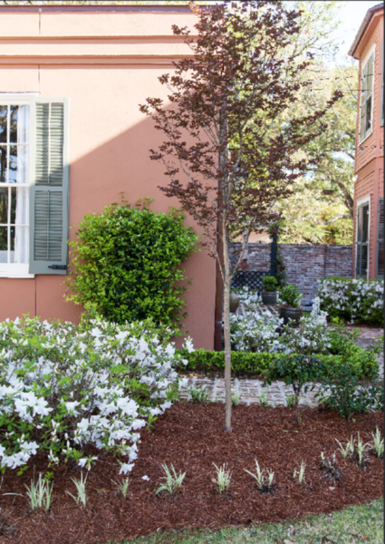 15 Tips to Achieve Lush Landscaping with a Sustainability Focus