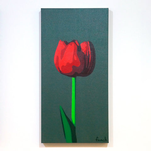 Dark Red Tulip