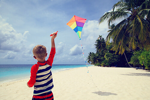 family fitness, fly a kite