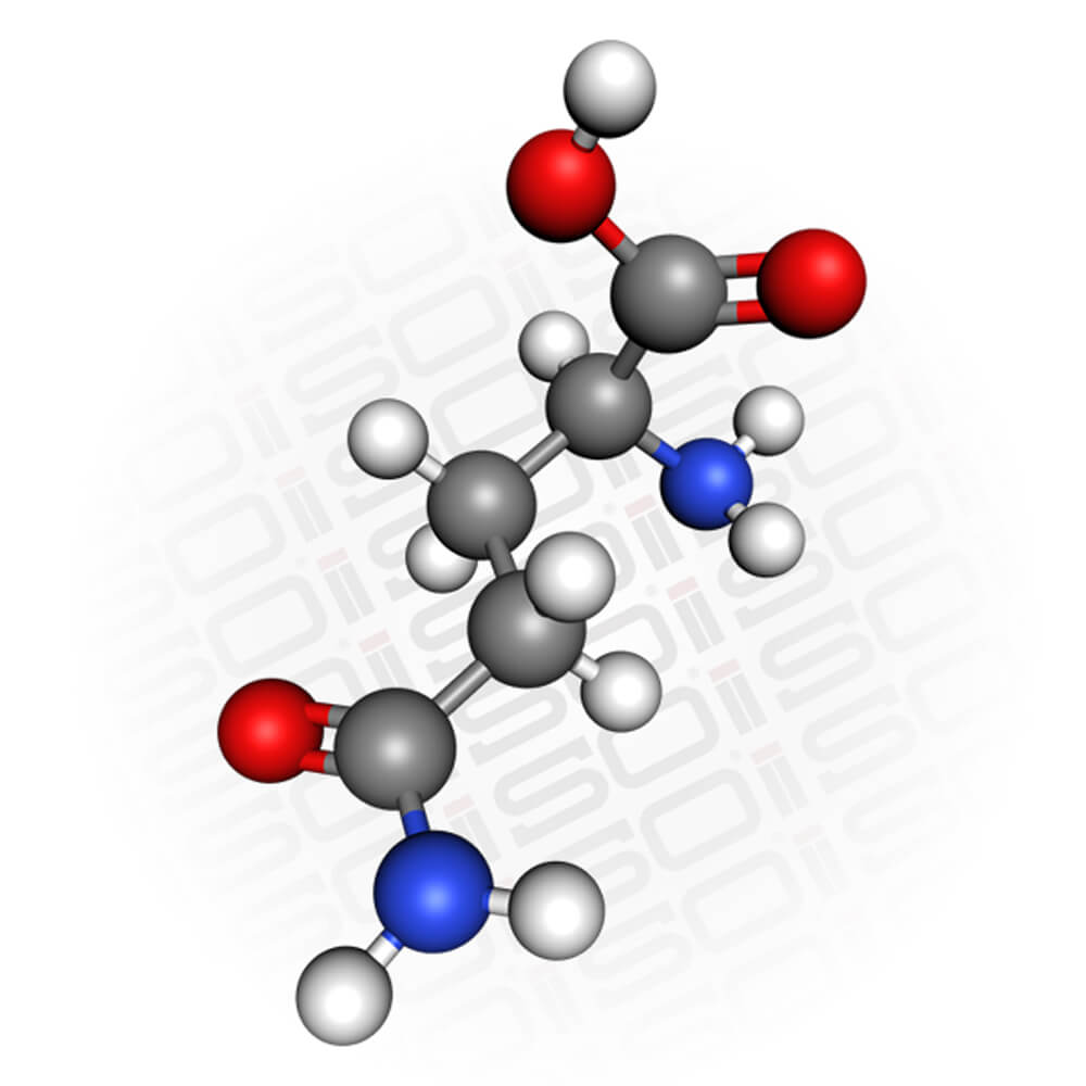 Molecular view of L-Glutamine