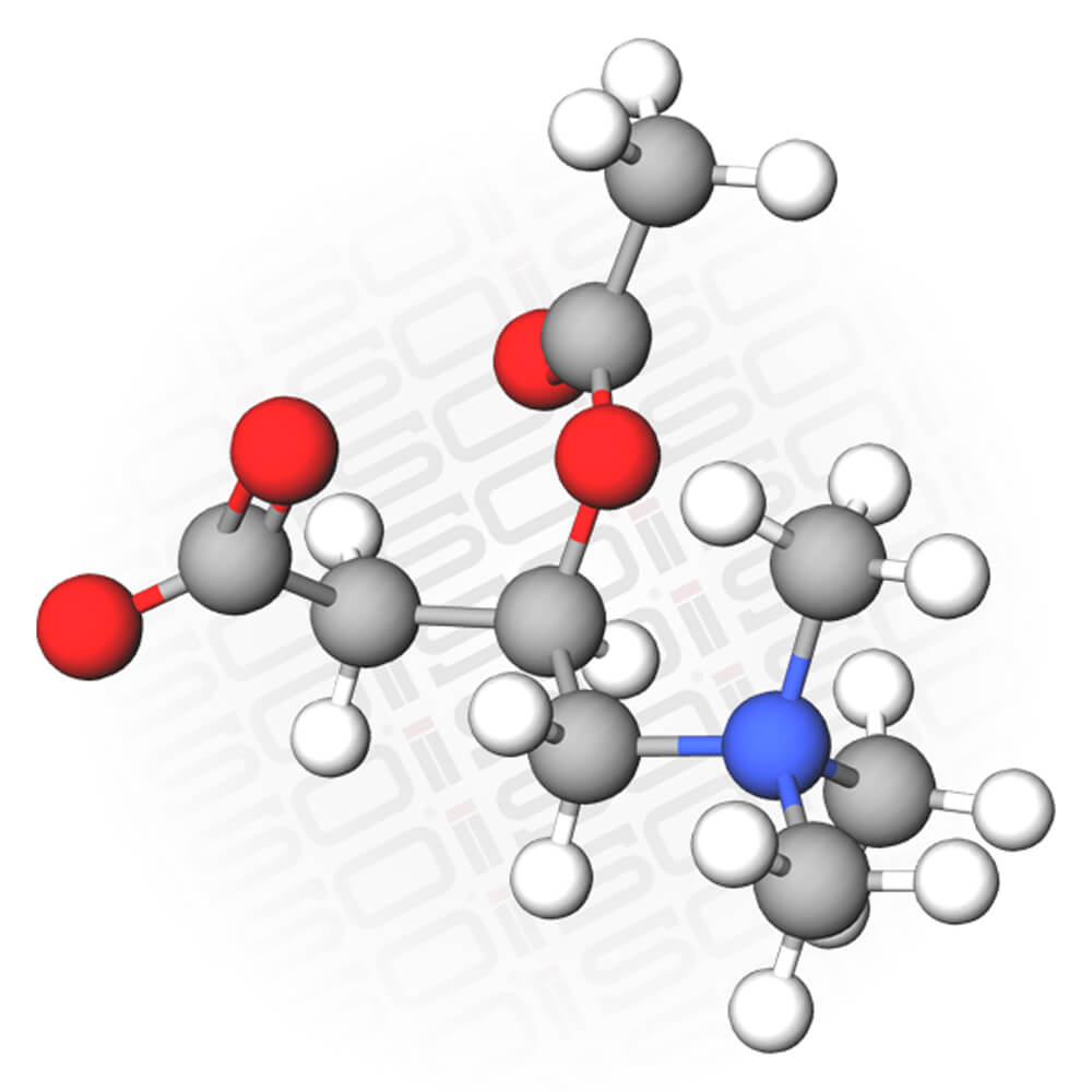 Molecular Representation of the Compound Acetyl L Carnitine
