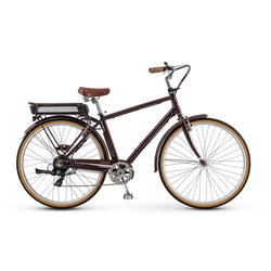 Raleigh IE Superbe 350W Currie '17 Bike Brown - Bike Doctor, Vancouver