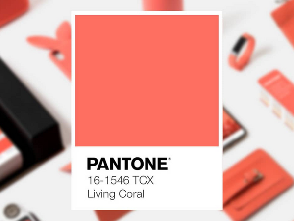 LIVING CORAL GIVES US LIFE!