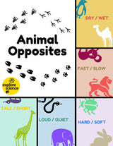 Animal Opposites Bundle: 5 Activity Kits (Ages 3-12, NGSS & CC) - Explore Science