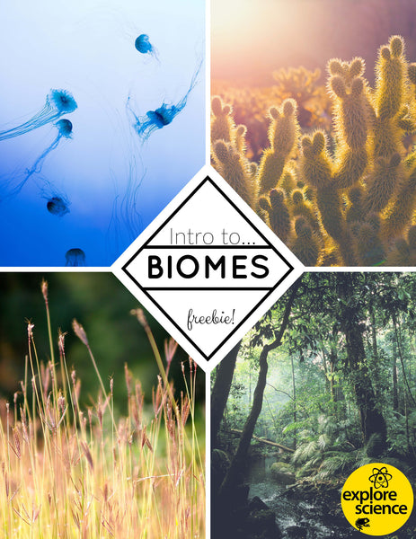 Intro to Biomes (includes Worksheet, Pre-K and K) - Explore Science