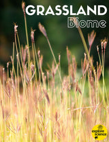 Grassland Biome Activity Kit (Pre-K and K, NGSS & CC) - Explore Science