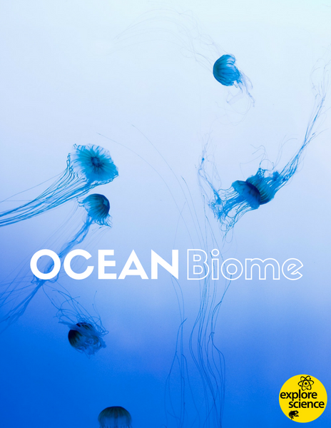 Ocean Biome Activity Kit (Pre-K and K, NGSS & CC) - Explore Science