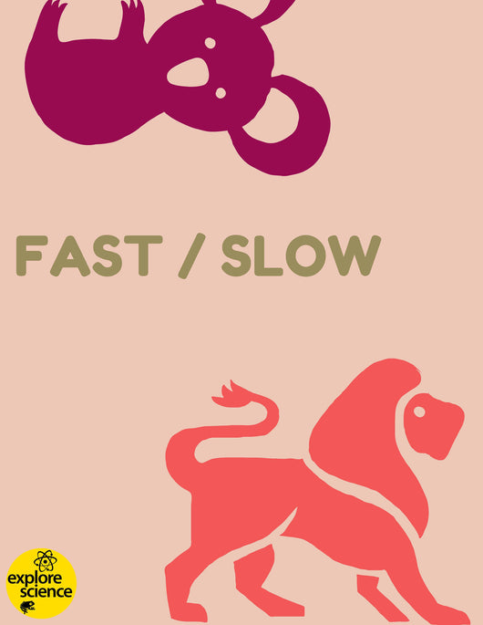 Animal Opposites: Fast/Slow Activity Kit (Ages 3-12, NGSS & CC) - Explore Science