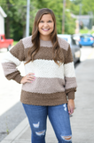 Color Block Balloon Sleeved Sweater