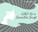 CBD oil for a Sensitive Scalp
