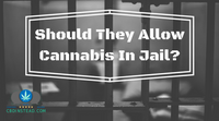 Should They Allow Cannabis In Jail?