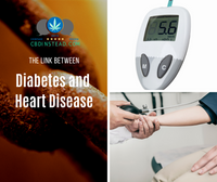 The Link Between Diabetes and Heart Disease