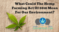 What Could The Hemp Farming Act Of 2018 Mean For Our Environment?