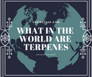 What in the World are Terpenes and Why do They Matter?