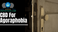 CBD For Agoraphobia