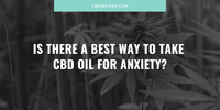 Is There a Best Way to Take CBD Oil for Anxiety?
