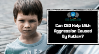 Can CBD Help With Aggression Caused By Autism?