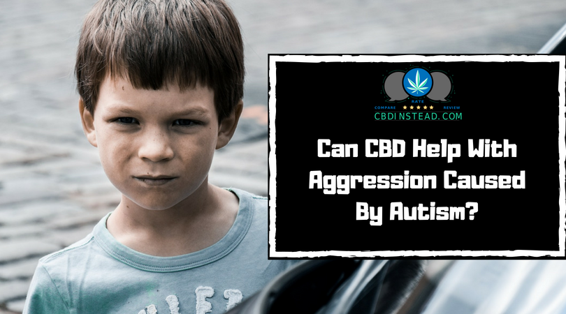 Can CBD Help With Aggression Caused By Autism? – CBD Instead