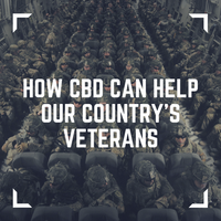 How CBD Can Help Our Country's Veterans