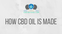 How CBD Oil Is Made