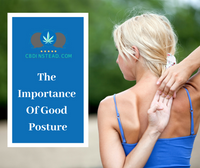 The Importance Of Good Posture