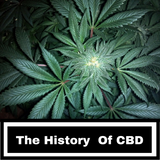 The History Of CBD