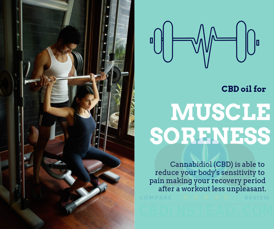 CBD For Muscle Recovery – CBD Instead