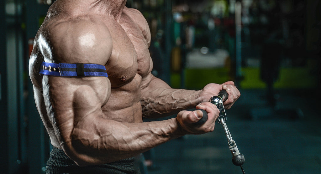 Occlusion Training Biceps - Build Bigger Biceps with BFR Training