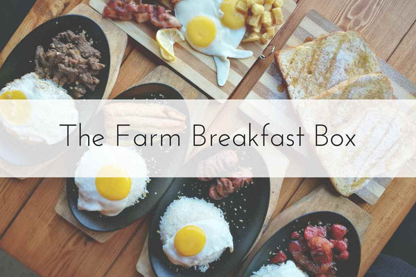 The Breakfast Box | Large