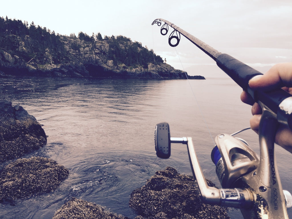 fishing star - the top saltwater tackle and freshwater fishing gear, Fishing Rod