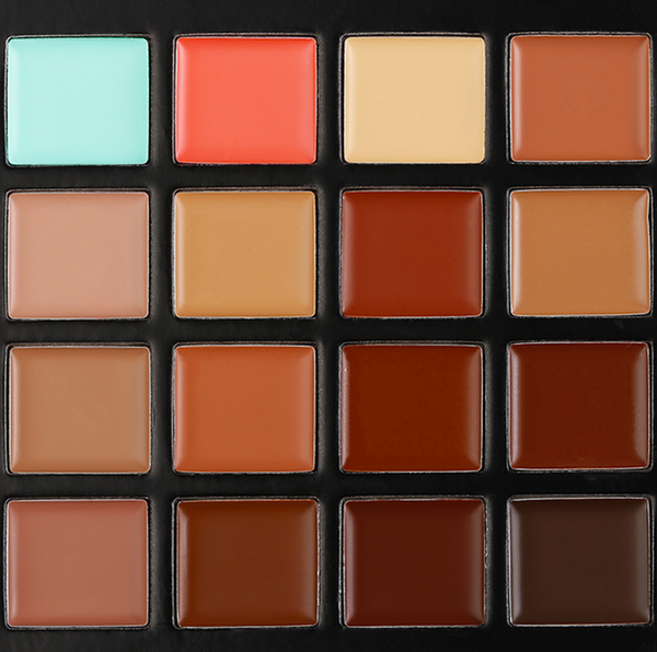 Pro Concealer Palette - Haus of Luxe