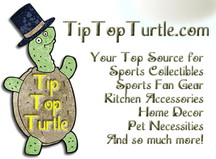 Tip Top Turtle