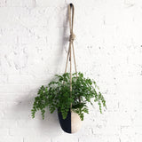 Hanging Planter: Black & White