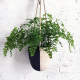 Hanging Planter: Black and White