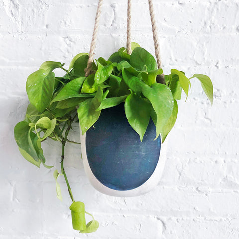 Hanging Planter: Full Moon Indigo
