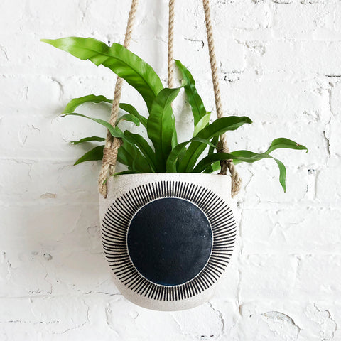 Hanging Planter: New Eye Indigo