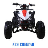 Taotao New Cheetah 125CC ATV with Automatic w/Reverse Red