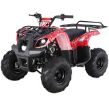 TaoTao ATA-125D 110CC Kids ATV Automatic w/Neutral and Reverse