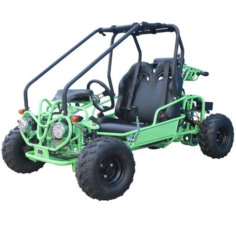 TaoTao GK110 110cc Go Kart with Fully Automatic  W/Reverse Green