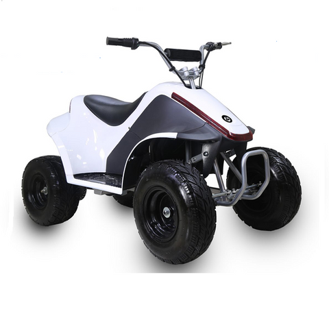 TaoTao Rover 500 Kids Electric ATV