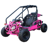 TaoTao GK110 110cc Go Kart with Fully Automatic  W/Reverse Pink