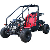 TaoTao GK110 110cc Go Kart with Fully Automatic  W/Reverse Black