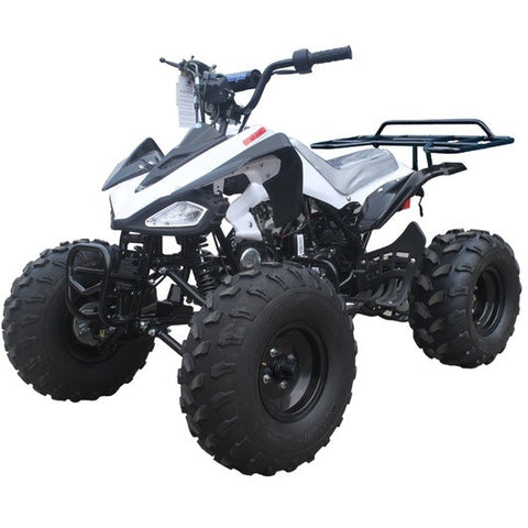 "Taotao Cheetah 110CC ATV with Automatic w/Reverse! Big 19/18"" Tires - ATV SCOOTER STORE, INC"