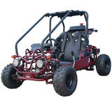 TaoTao GK110 110cc Go Kart with Fully Automatic  W/Reverse Red