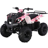TaoTao ATA-125D 110CC Kids ATV Automatic w/Neutral and Reverse - ATV SCOOTER STORE, INC