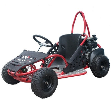 TaoTao 80cc MINI Gas Gokart with Automatic Transmission. Recoil Start - ATV SCOOTER STORE, INC