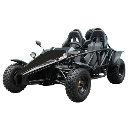 TaoTao Arrow 200cc GoKart