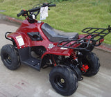 110cc Kids ATV Hawk with Remote Control Key - ATV SCOOTER STORE, INC